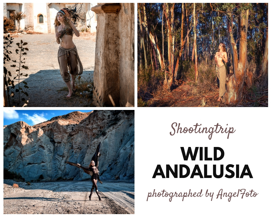 wild andalusia